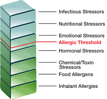 The total load of stressors forces the patient over the allergic threshold causing them to have allergic symptoms. These stressors can include a wide range of factors beyond food and inhalant allergens including infections, nutritional stressors, emotional stressors, hormonal imbalances, and chemical/toxin stressors.
