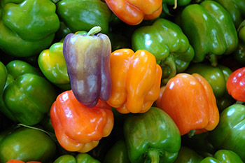 Bell peppers come in a variety of colors, including green, yellow, orange, red, purple and even white and brown. Bell peppers can be eaten raw or cooked. Try them roasted, baked or sautéed.